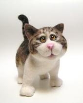 Котенок Симба